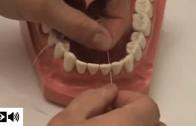Como usar fio dental (demonstração em modelo)