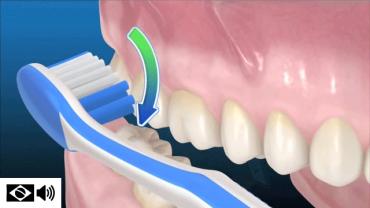 como escovar os dentes – escova manual