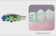 escova gum activital