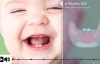 A importância dos dentes de leite